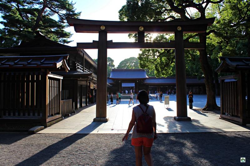 Cosa vedere a Tokyo il Santuario Meiji Jingu