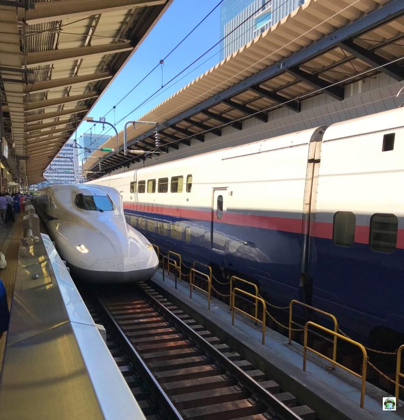 Stazione dei treni in Giappone