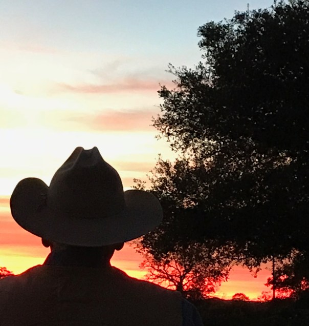 Back lit cowboy with a sunrise or sunset