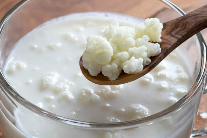 Beneficios del kfir para la salud fuente de probiticos y