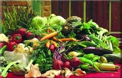 Tentadora menestra de verduras