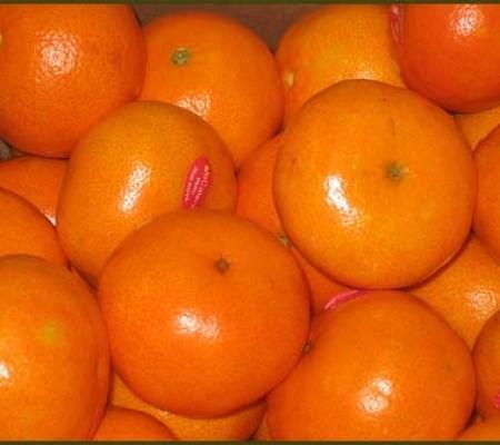 dulce de mandarinas
