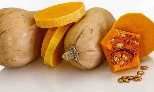 Ideas para cocinar con calabaza: 7 recetas fáciles para toda la familia [Selección de vídeo-recetas]