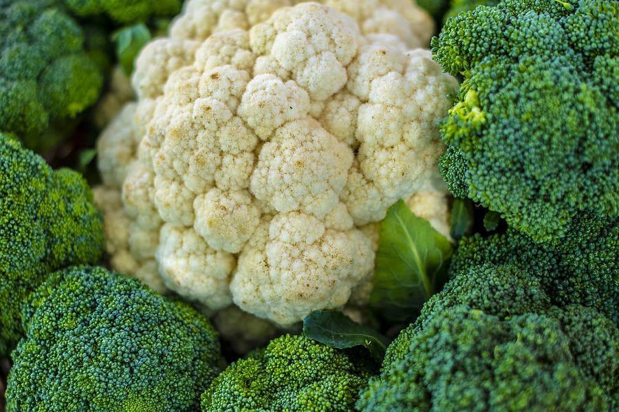 deliciosas recetas faciles con brocoli y coliflor