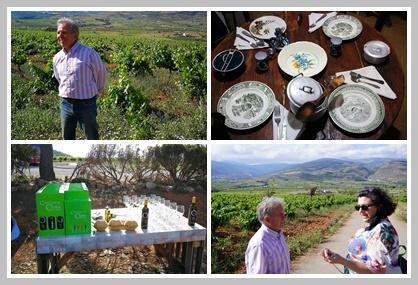 Enoturismo por la Alpujarra Almeriense