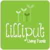 liliput_logo_WG2