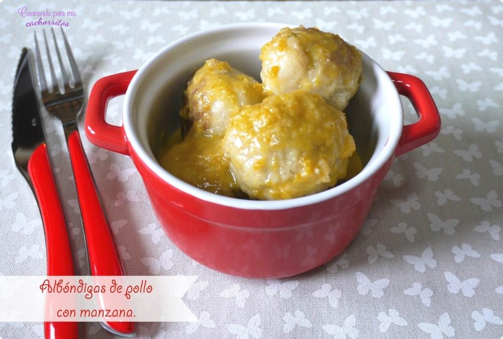 Albóndigas de pollo