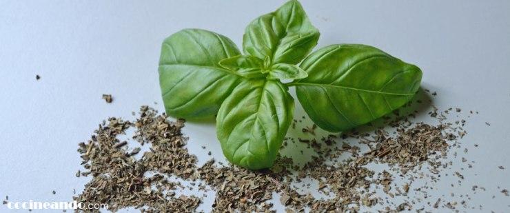 Usos culinarios y propiedades de la Albahaca y otras hierbas aromáticas