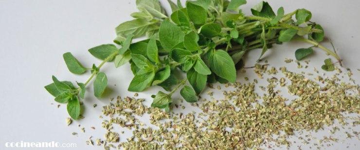 Usos culinarios y propiedades del oréganoiy otras hierbas aromáticas