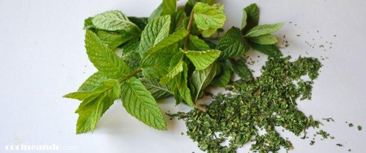 Usos culinarios y propiedades de la menta o hierbabuena y otras hierbas aromáticas