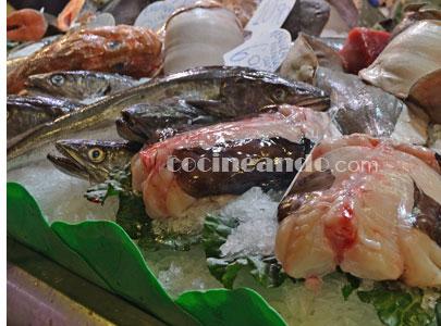 Los pescados más usados en cocina y cómo cocinarlos