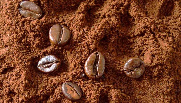 Tipos de cafés y bebidas a partir de café - café arabica y cafe robusta - cafe americano - cafe con leche, café au lait o café latte - capuccino - coretto o carajillo - cortado - cafe frappe - cafe mocha chocolate - cafe ristretto