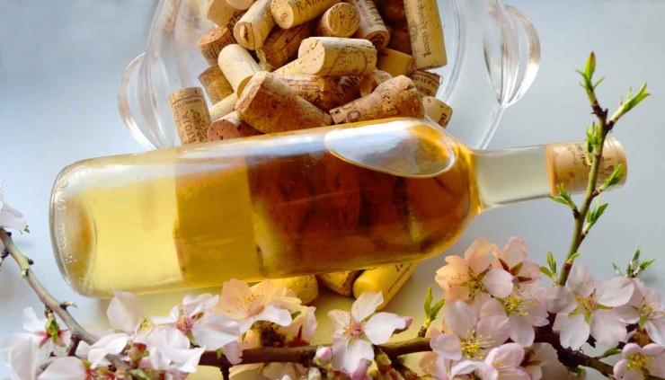 La rueda de los aromas del vino - cata de vinos: fase olfativa