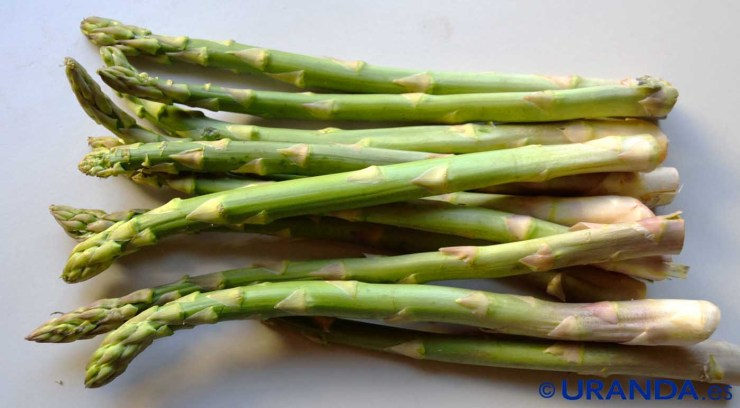 Esparragos, valor nutritivo o nutricional y propiedades nutritivas - calendario de frutas y verduras de temporada