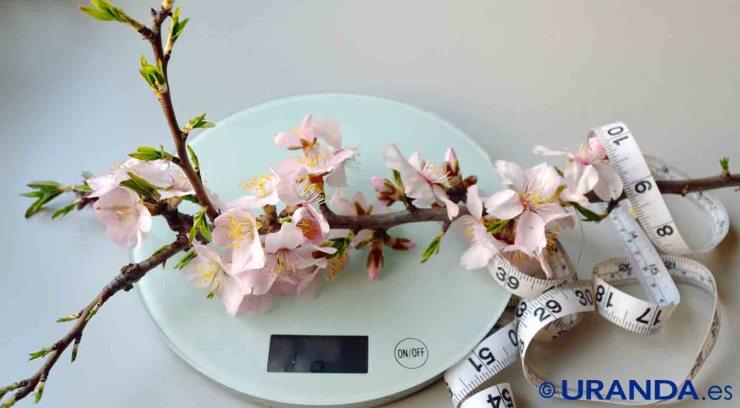 Las dietas para adelgazar también pueden ser un producto de consumo - alimentación y nutrición - coaching nutricional