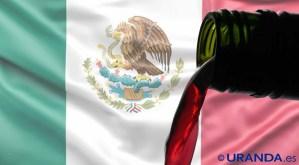 Vinos de México: caraceríticas, uvas y zonas de producción