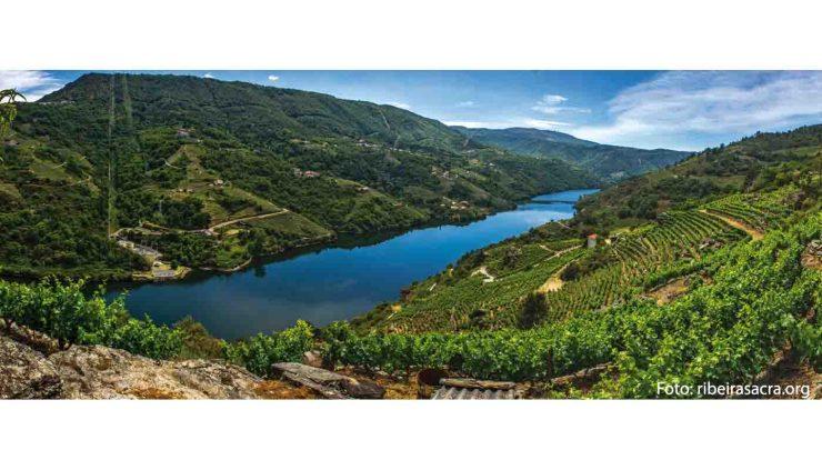 Denominación de origen Ribeira Sacra: tipos de uvas y vinos, bodegas, marco geográfico - vinos de España - vinos de Galicia