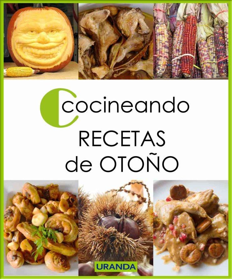 Cocineando recetas de otoño: libro e-book de cocina gratuito en PDF - Descarga gratuita
