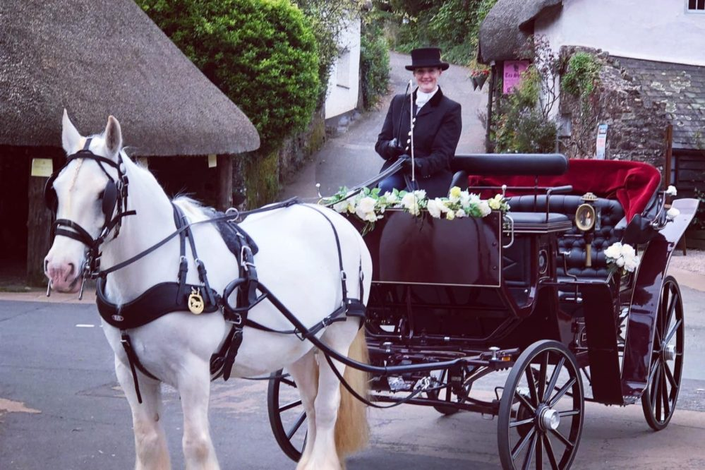 Horse & carriage, Cockington