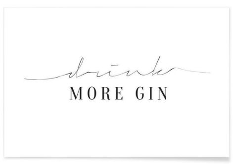 more gin-海報