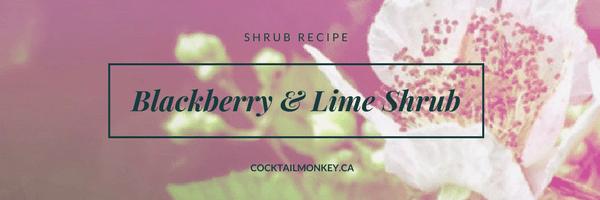 How to: Blackberry Shrub Recipe