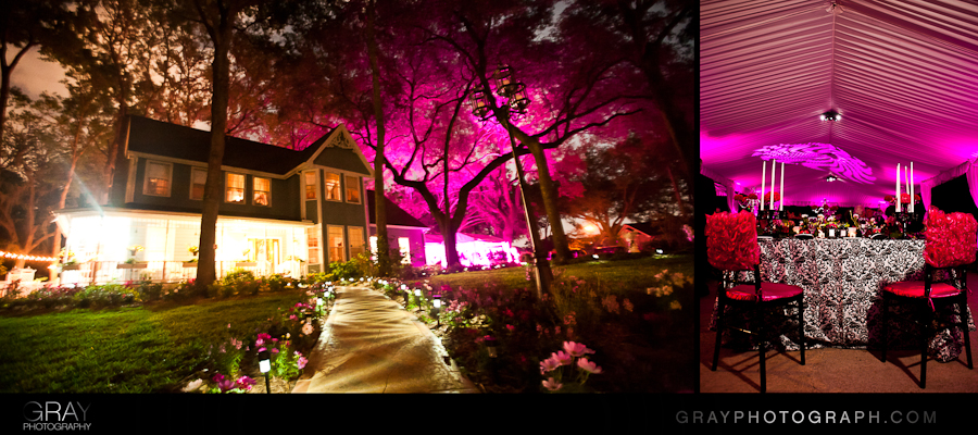 pink uplighting at a home wedding