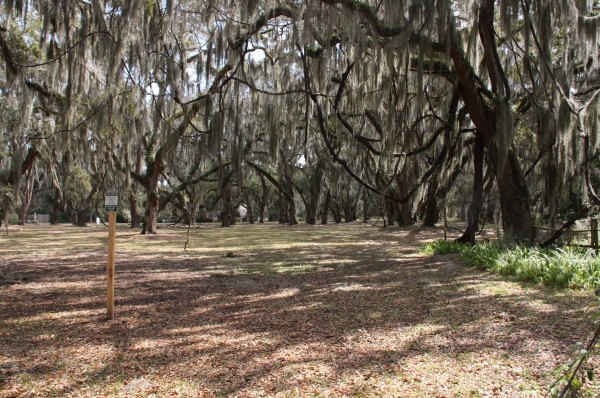 Wedding Elopement at Mallery Park in St SImons Island