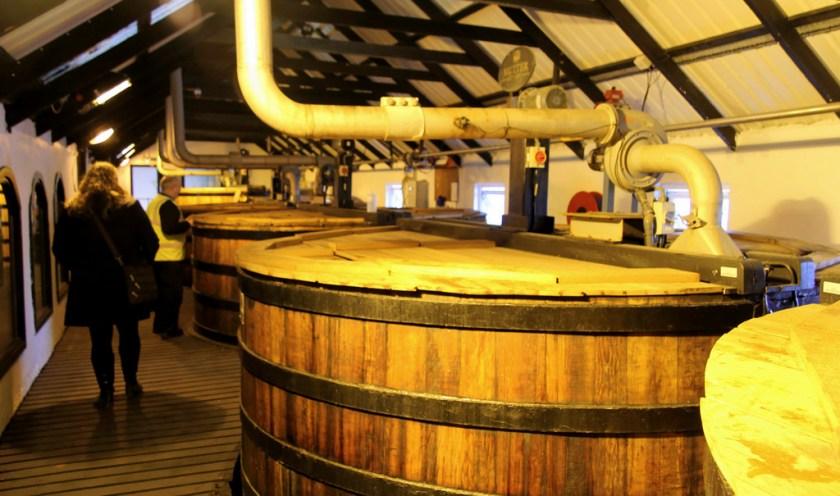 washbacks, Bowmore distillery