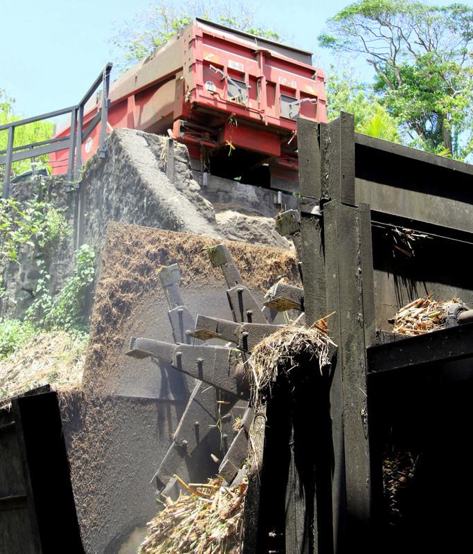 Cane arrives for shredding, Rhum JM, Martinique