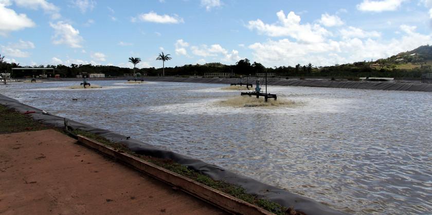 Cooling pond, Distillerie du Simon, Martinique