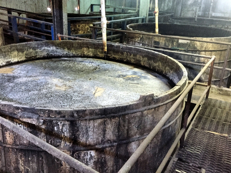 Ferment vats at Clarendon, Jamaica