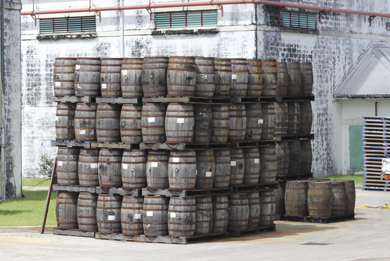 Mount Gay distillery casks