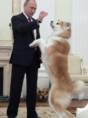 プーチンの愛犬