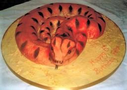 Orange and black snake party cake