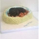 Pug in a Basket Birthday Cake by Cocoa & Whey Cakes in Winchester