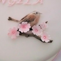 Christening Cake with Handmade Sugar Wren & Cherry Blossoms by Cocoa & Whey Cakes in Winchester, Hampshire