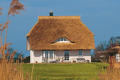Danhaus zaļās mājas
