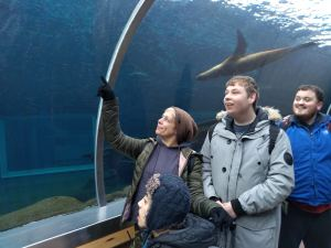 Wednesday 18th December,  Self Care and Recreation – Christmas at Colchester Zoo