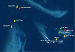 Geographical Position of Some Identified Sea Turtles Around Coco Bodu Hithi
