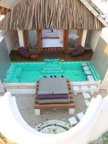 The secluded private garden for a private dip in your swimming pool
