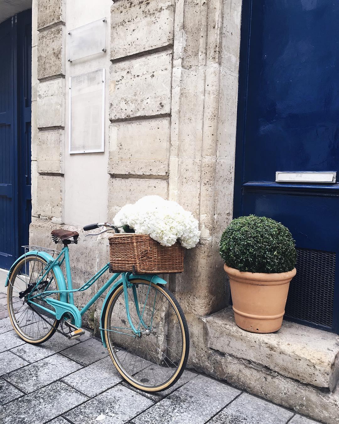 Turquoise blue bike white hydrangea Paris