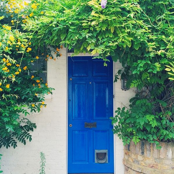 bright blue front door cococozy the seven