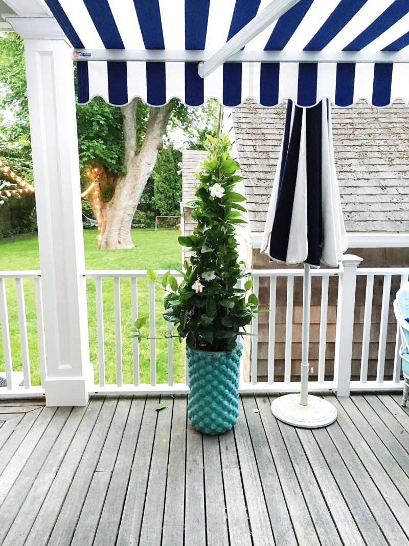 East Hampton House White Blue Potted plant Cococozy