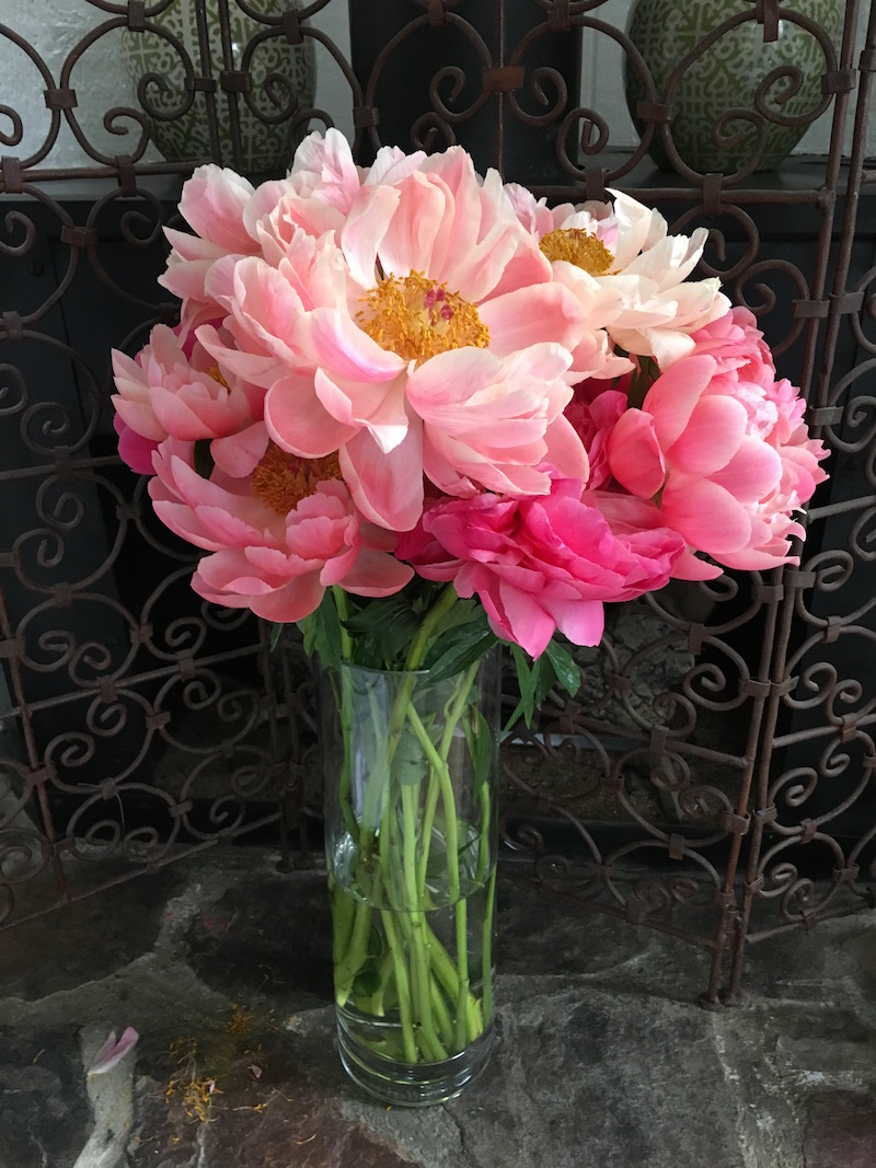light pink peonies coral gold
