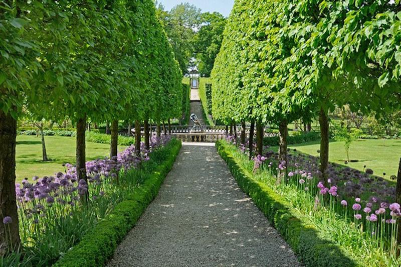 garden allees trees street