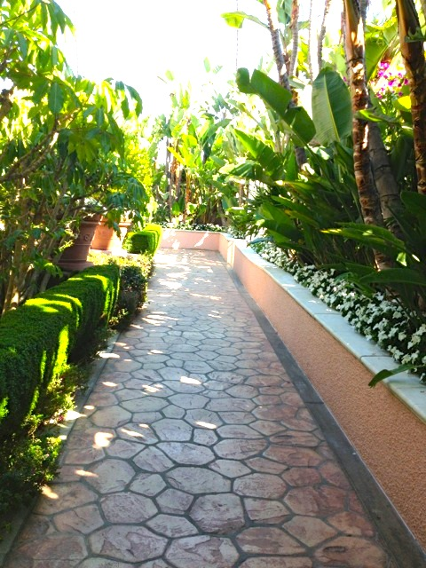 Outdoor flagstone walkway, birds of paradise, banana trees and flowers