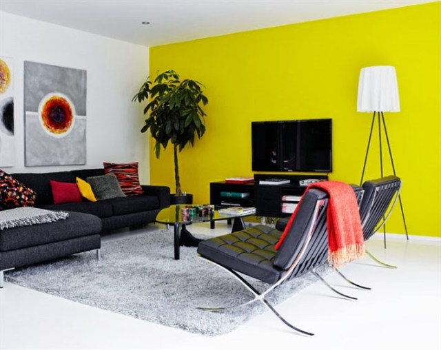 Open Living With Distinct Color Views Accent Walls