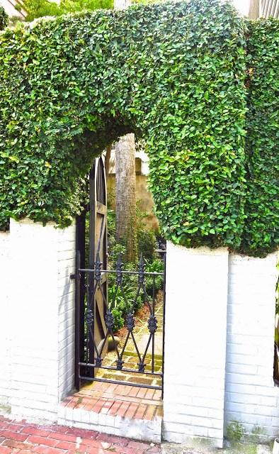 Secret garden and iron gate in Charleston, SC