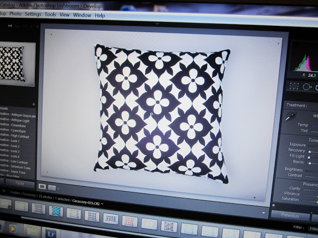 Computer screen with images from the COCOCOZY pillow photo shoot