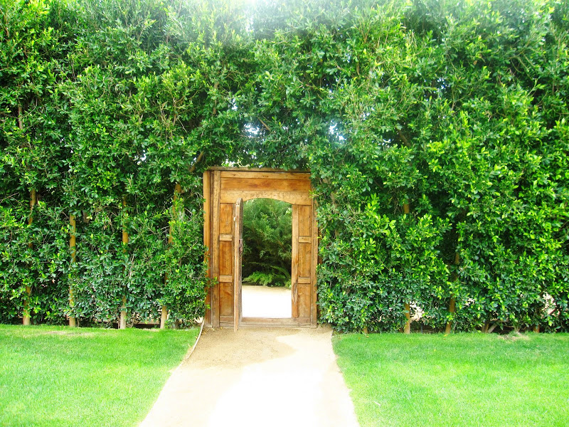 Green ficus surround a wood carved doorway leading to a private garden at the Parker Hotel in Palm Springs